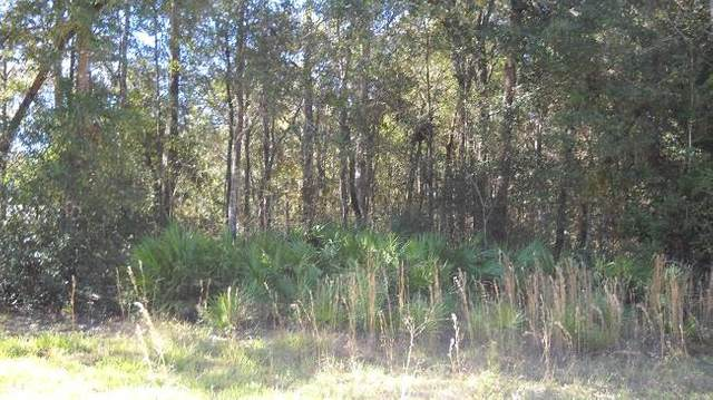 Lot 39 902nd Street SE, Old Town, FL 32680 (MLS #780953) :: Compass Realty of North Florida