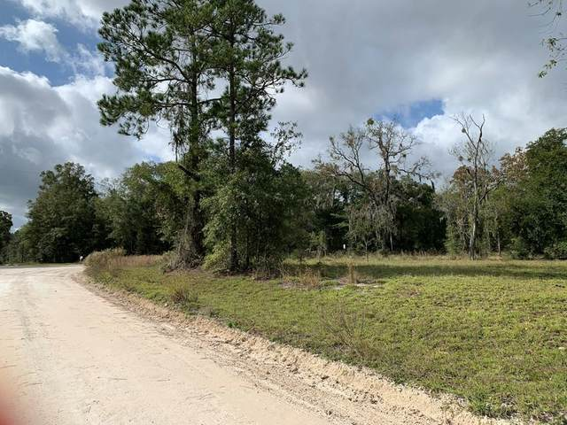 30th St NW, Bell, FL 32619 (MLS #780958) :: Bridge City Real Estate Co.