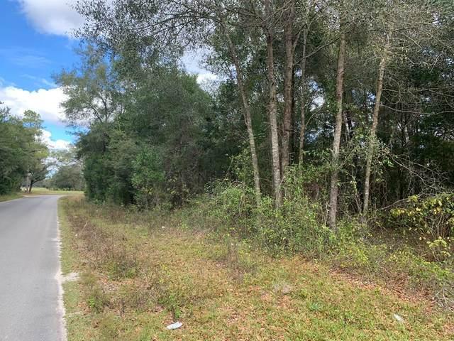 Lot 8 Roosevelt Circle SW, Mayo, FL 32066 (MLS #780994) :: Better Homes & Gardens Real Estate Thomas Group