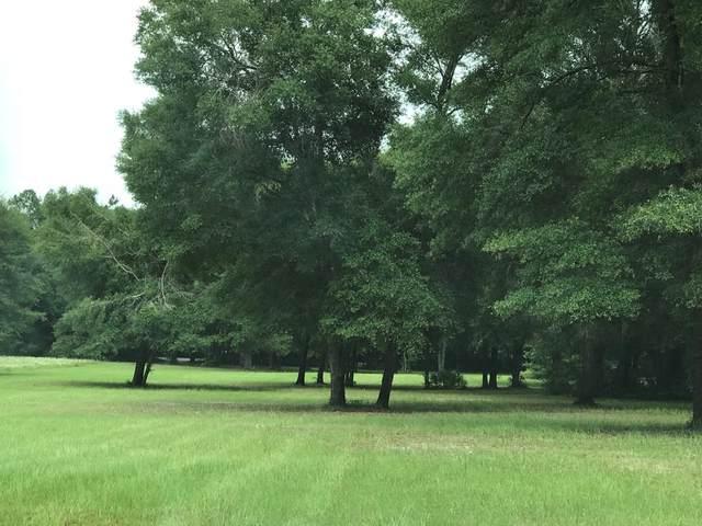 Cr 341 NW, Trenton, FL 32693 (MLS #781010) :: Better Homes & Gardens Real Estate Thomas Group