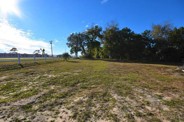 6106 Hwy 358 SW, Steinhatchee, FL 32359 (MLS #781016) :: Better Homes & Gardens Real Estate Thomas Group