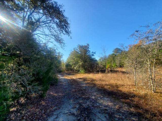 94 937th Avenue NE, Branford, FL 32008 (MLS #781123) :: Compass Realty of North Florida