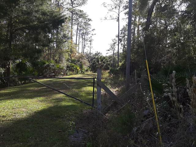 TBD Sheffield, Lamont, FL 32336 (MLS #781138) :: Compass Realty of North Florida