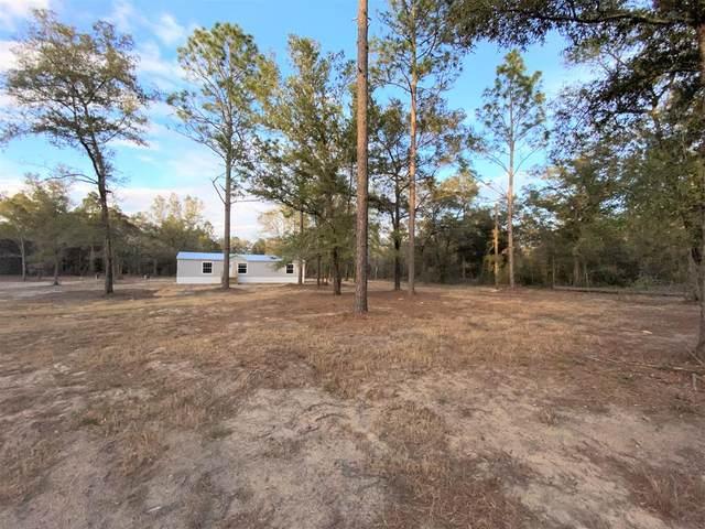 10091 NE 77th Pl, Bronson, FL 32621 (MLS #781194) :: Pristine Properties