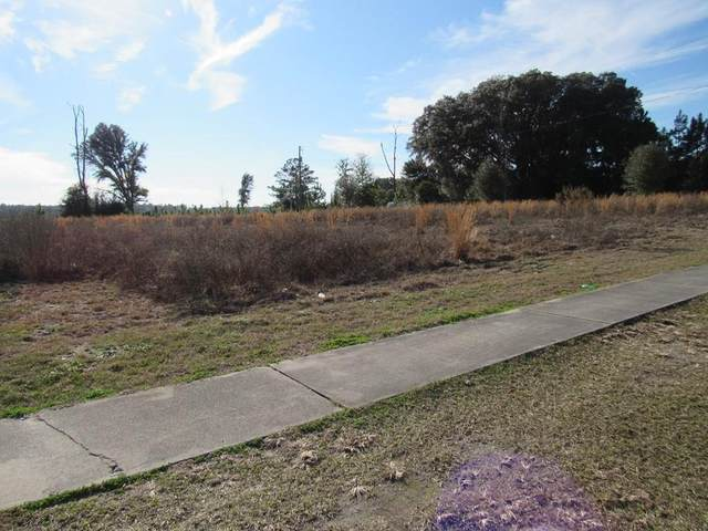 Hwy 19 SE, Old Town, FL 32680 (MLS #781225) :: Compass Realty of North Florida