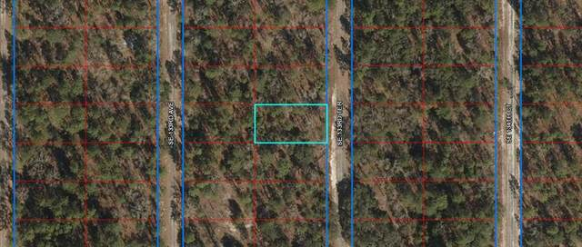 133 Terr SE, Dunnellon, FL 34431 (MLS #781249) :: Compass Realty of North Florida