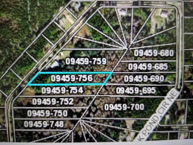 Oak Pond Circle Ne, Steinhatchee, FL 32359 (MLS #781251) :: Hatcher Realty Services Inc.