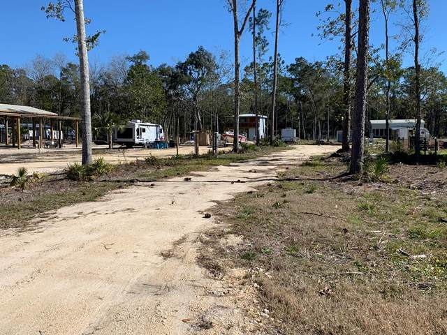 Lot 7 Fifth St NW, Steinhatchee, FL 32359 (MLS #781259) :: Compass Realty of North Florida