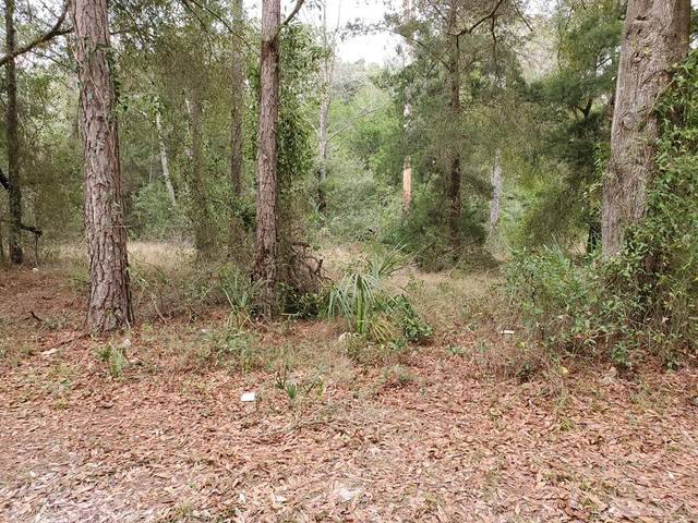 Lot 1 Main St N, Chiefland, FL 32626 (MLS #781264) :: Better Homes & Gardens Real Estate Thomas Group