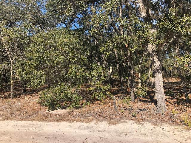 Lot 26 69 St NE, Williston, FL 32696 (MLS #781362) :: Hatcher Realty Services Inc.