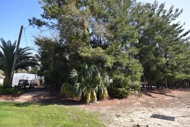 110 Twelfth St NE, Steinhatchee, FL 32359 (MLS #781414) :: Compass Realty of North Florida