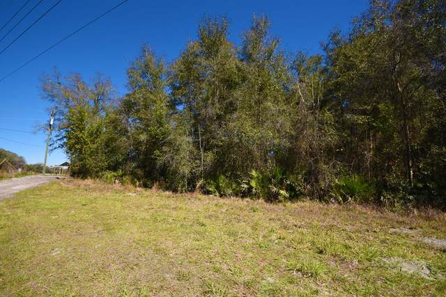 Hwy 349, Old Town, FL 32680 (MLS #781560) :: Hatcher Realty Services Inc.