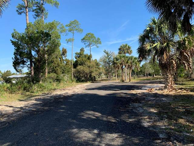273rd Ave SW, Steinhatchee, FL 32359 (MLS #781603) :: Compass Realty of North Florida