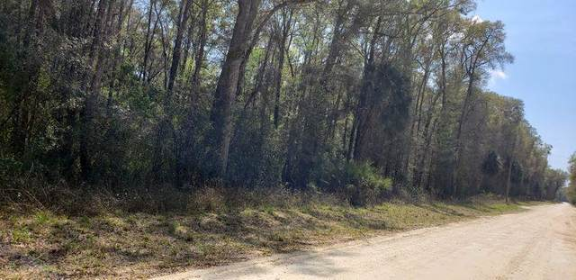 562 639th Street NE, Old Town, FL 32680 (MLS #781624) :: Hatcher Realty Services Inc.