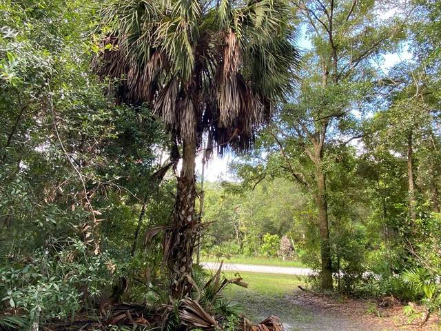 Lot 21 48th Ter NW, Chiefland, FL 32626 (MLS #781628) :: Compass Realty of North Florida