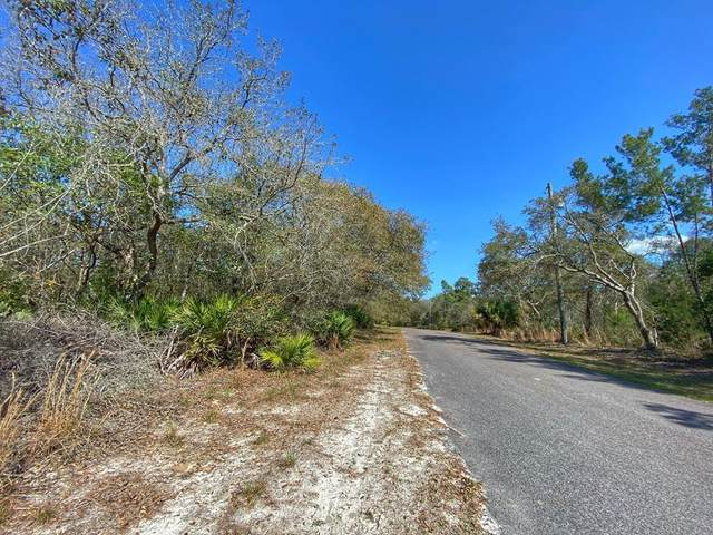 Lot 15 Riverview Rd, Fanning Springs, FL 32693 (MLS #781633) :: Compass Realty of North Florida