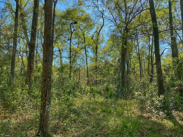 Lot 20 90th Ct NW, Fanning Springs, FL 32693 (MLS #781634) :: Hatcher Realty Services Inc.