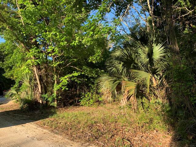 Peninsula Rd SE, Steinhatchee, FL 32359 (MLS #781735) :: Compass Realty of North Florida