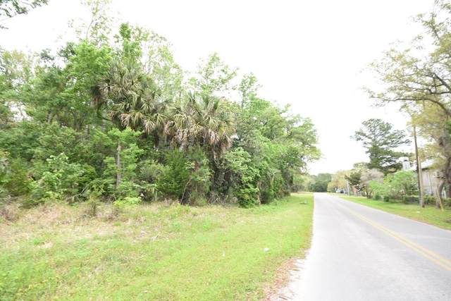 1st Ave NW, Steinhatchee, FL 32359 (MLS #781832) :: Better Homes & Gardens Real Estate Thomas Group