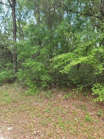 Lot 7 914th St SE, Old Town, FL 32680 (MLS #781856) :: Hatcher Realty Services Inc.