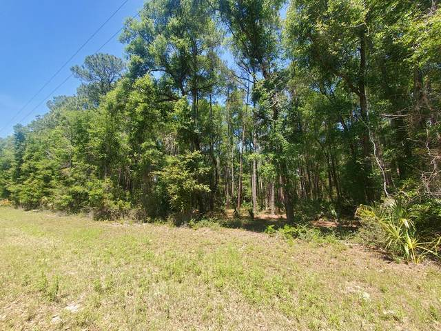 LOT 9 90th St NW, Chiefland, FL 32626 (MLS #781907) :: Hatcher Realty Services Inc.