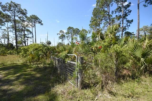 275th St SW, Steinhatchee, FL 32359 (MLS #781908) :: Hatcher Realty Services Inc.