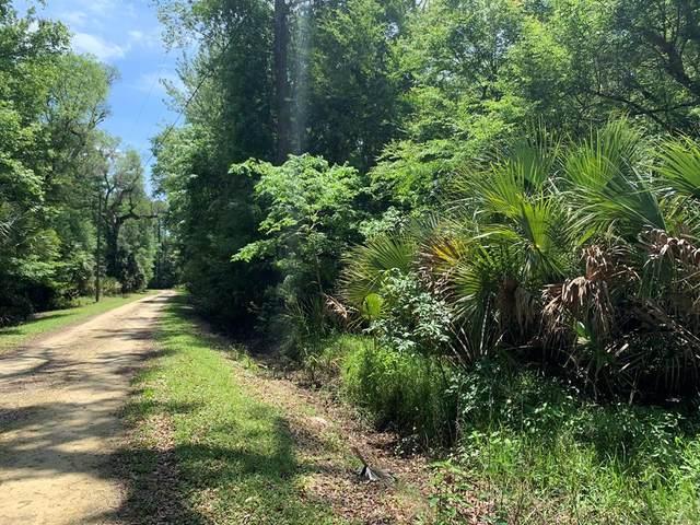 2349 Ancient Oaks Dr NE, Steinhatchee, FL 32359 (MLS #781921) :: Hatcher Realty Services Inc.