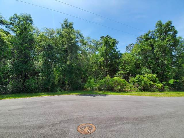 Lot 114 173rd Pl NW, Fanning Springs, FL 32693 (MLS #781922) :: Compass Realty of North Florida