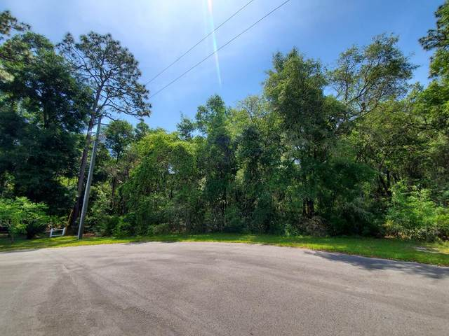 Lot 115 173rd Pl NW, Fanning Springs, FL 32693 (MLS #781923) :: Compass Realty of North Florida