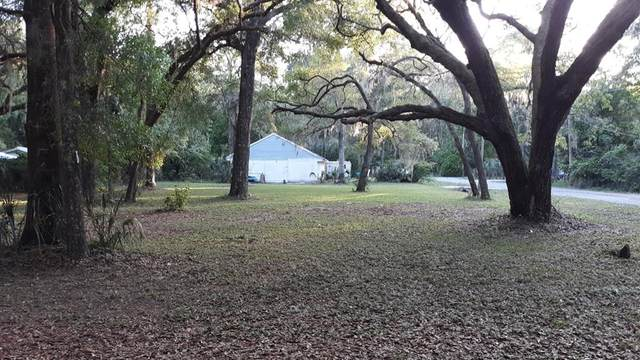 9250 178th Pl NW, Fanning Springs, FL 32693 (MLS #781926) :: Compass Realty of North Florida