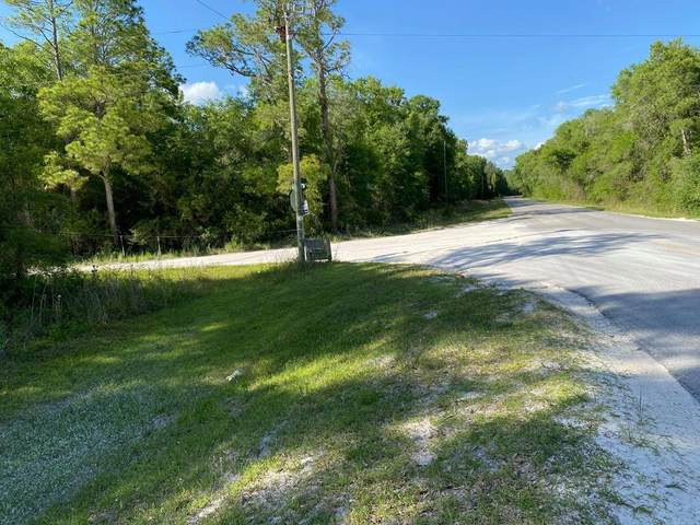 00 876th Ave NE, Old Town, FL 32680 (MLS #781931) :: Hatcher Realty Services Inc.
