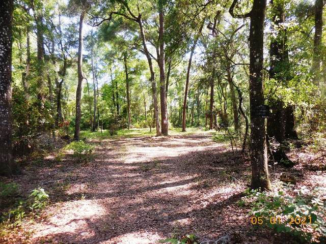 166th Pl NW, Fanning Springs, FL 32693 (MLS #781945) :: Better Homes & Gardens Real Estate Thomas Group