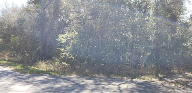 182 453rd Ave NE, Old Town, FL 32680 (MLS #781969) :: Hatcher Realty Services Inc.