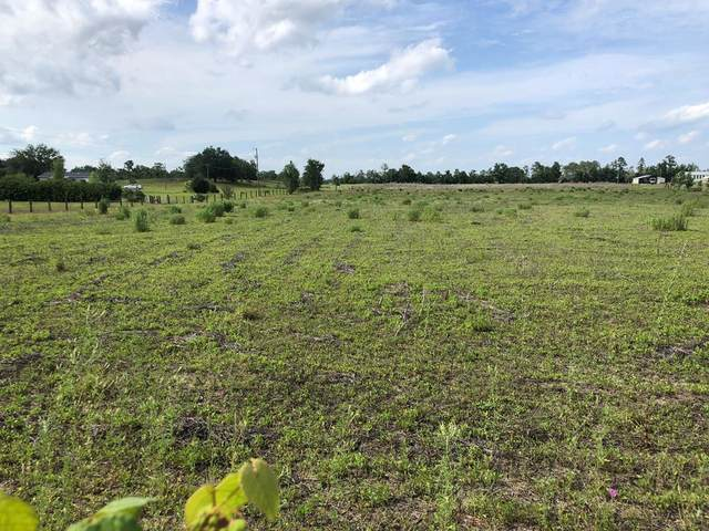 50th St NW, Bell, FL 32619 (MLS #781978) :: Compass Realty of North Florida