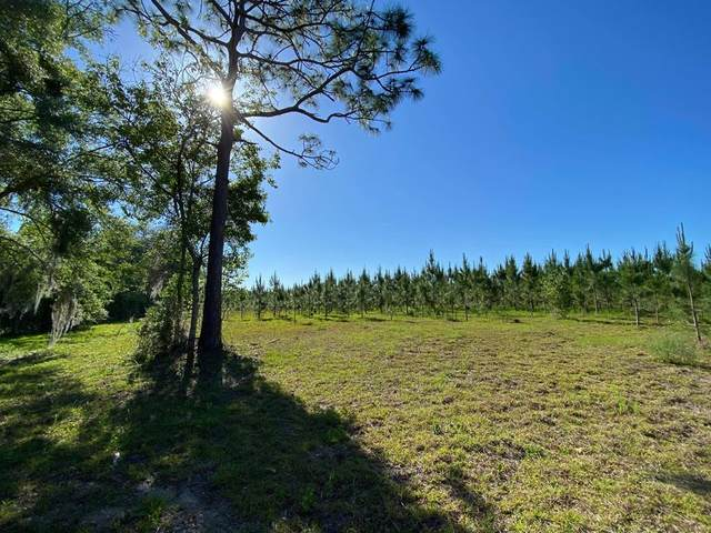 00 75th Ct SW, Bell, FL 32619 (MLS #781981) :: Compass Realty of North Florida