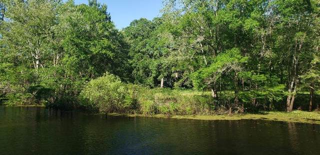 2180 County Road 317 SE, Old Town, FL 32680 (MLS #782013) :: Hatcher Realty Services Inc.