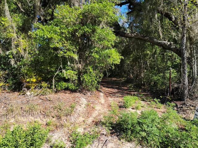 State Rd 24 NE, Archer, FL 32618 (MLS #782020) :: Compass Realty of North Florida