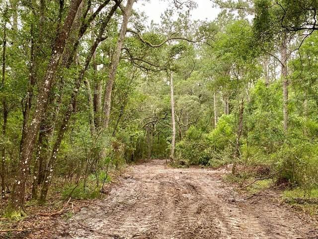 00 80th Ave SW, Bell, FL 32619 (MLS #782028) :: Bridge City Real Estate Co.