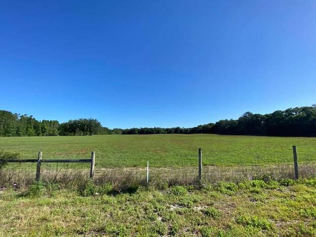 2120 10th St NW, Bell, FL 32619 (MLS #782033) :: Bridge City Real Estate Co.