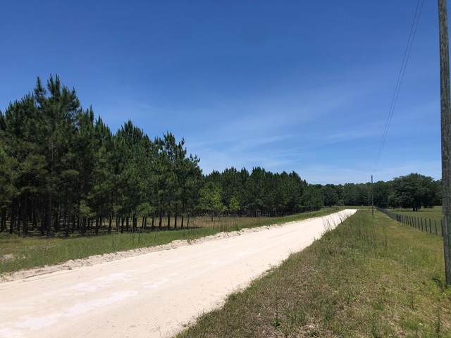 L31 41st Cir NW, Bell, FL 32619 (MLS #782048) :: Hatcher Realty Services Inc.