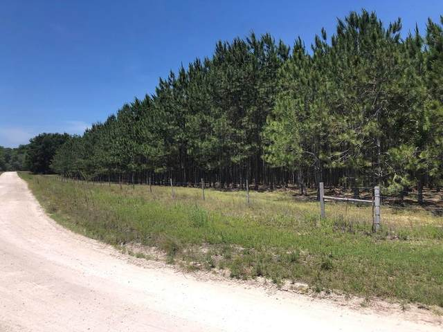 L33 41st Cir NW, Bell, FL 32619 (MLS #782049) :: Hatcher Realty Services Inc.