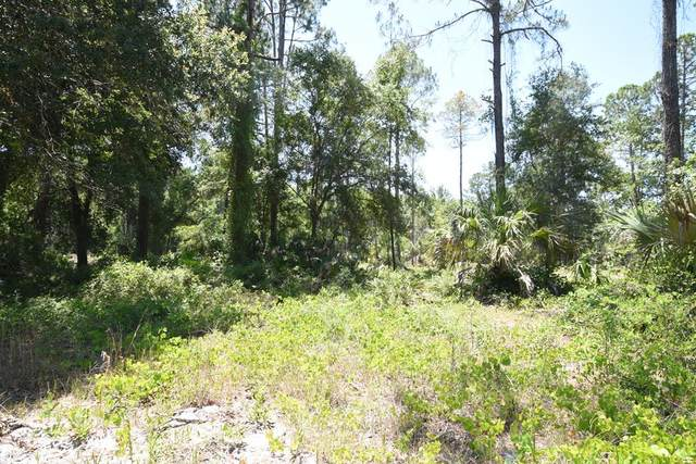 Lot 46 Hwy 349 SE, Suwannee, FL 32680 (MLS #782127) :: Compass Realty of North Florida
