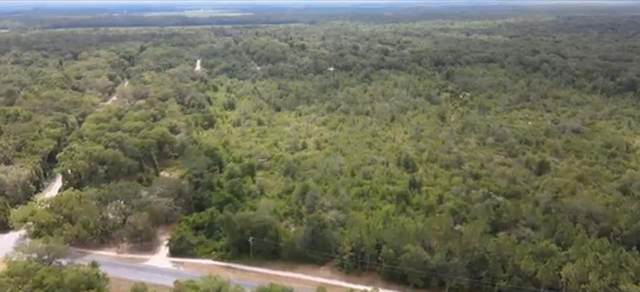County Road 351, Cross City, FL 32628 (MLS #782147) :: Compass Realty of North Florida