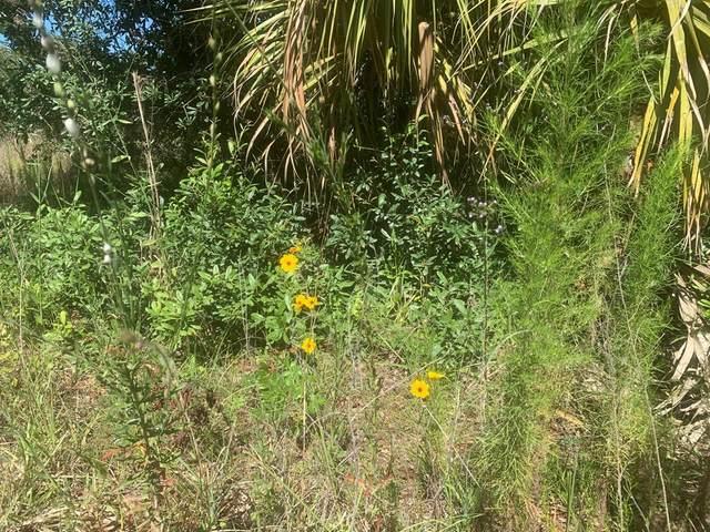 104th Ct SW, Cedar Key, FL 32625 (MLS #782224) :: Pristine Properties