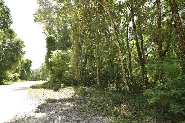 312th Ave NE, Old Town, FL 32680 (MLS #782236) :: Compass Realty of North Florida