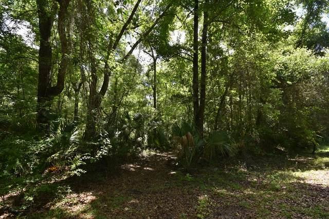 665 558th St NE, Old Town, FL 32680 (MLS #782248) :: Pristine Properties