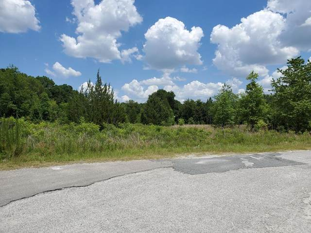 Young Blvd N, Chiefland, FL 32626 (MLS #782259) :: Compass Realty of North Florida