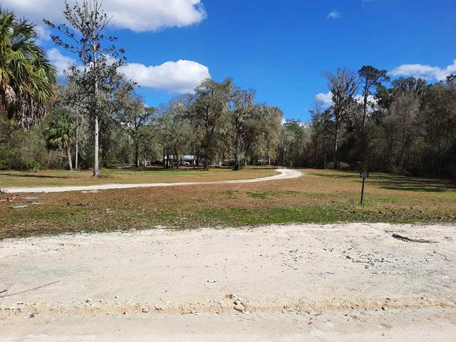 473 SE 692nd St, Old Town, FL 32680 (MLS #782283) :: Compass Realty of North Florida