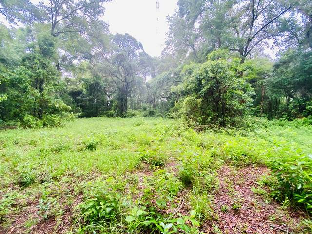 Lot 20 170th St NW, Trenton, FL 32693 (MLS #782302) :: Compass Realty of North Florida