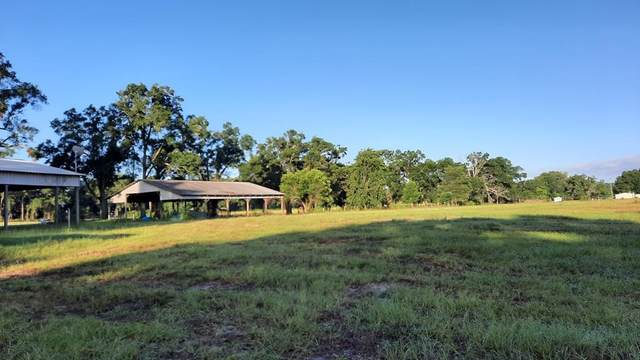 5219 40th St SW, Bell, FL 32619 (MLS #782365) :: Compass Realty of North Florida